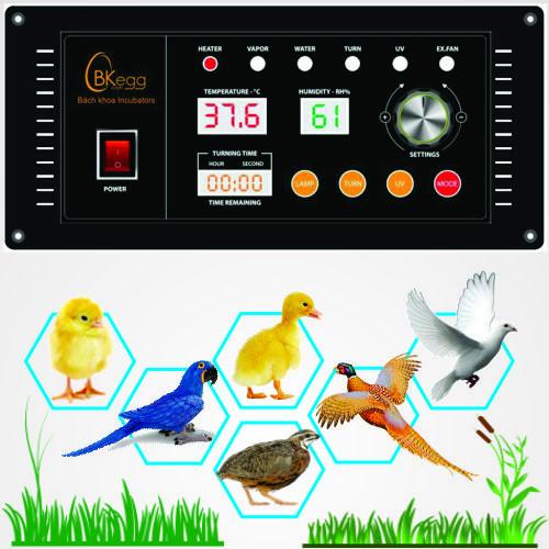 Bộ điều khiển máy ấp trứng Bách Khoa